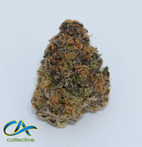 CA Collective GDP