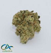 CA Collective Pineapple Glue