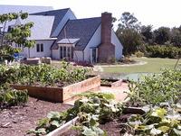 Food Garden Maintenance
