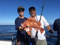 Coral Sea 3/4 day Charter 11.4.17