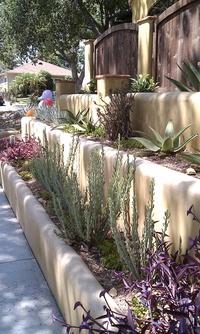 Front Yard Terraces