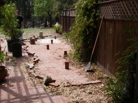 Ironwoods Plants Design - Before
