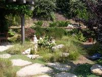 Zen Planting