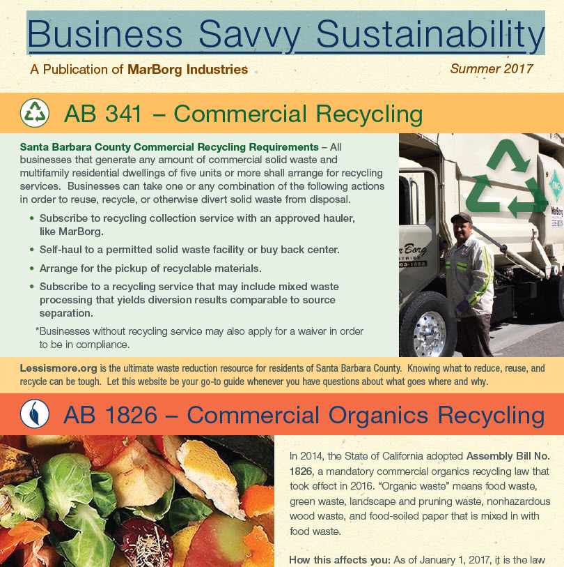 2017 - Summer - Business Savvy Sustainability