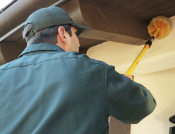 O'Connor Pest Control Residential Camarillo