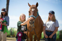 Equine Facilitated Hearts Riding Santa Barbara-1