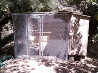 Predator-Proof Chicken Coop