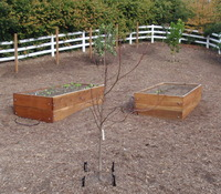 Raised Beds - Horse Corral Conversion