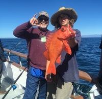 Coral Sea 3/4 day 3.8.18