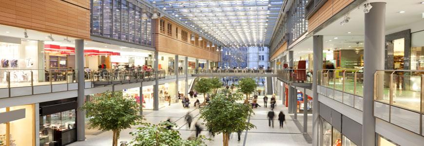 Consumer Goods / Retail
