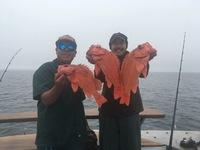 Coral Sea 3/4 day 3.30.18