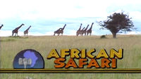 Eye On LA African Safari