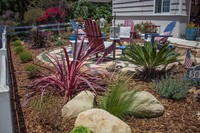 Salinaslandscapeconstruction20160714_0033