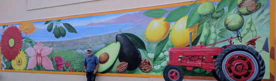 """The Carpinteria Valley- A Growing Heritage"" by local artist John Wullbrandt"