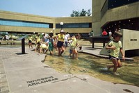 Interactive Model of the River