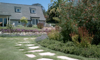 UC Verde Buffalo Grass: Ultra-Low Water Drought-Tolerant Planting Design