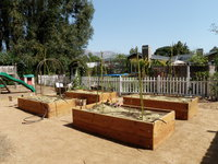 Spacious Planter Beds