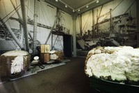 Cotton Center