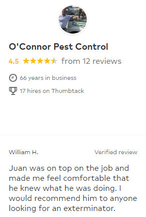 Residential Pest Control Review from Thumbtack.com