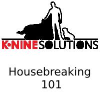 Housebreaking 101