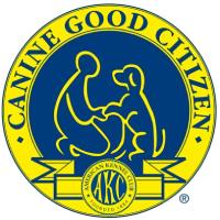 CGC Test Guidelines