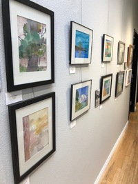 a studio wall with several watercolor paintings hung on exhibition