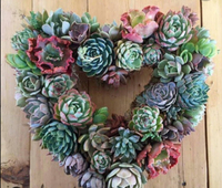 Art Classes & Workshops - Boyd - Succulent Wreath - 2