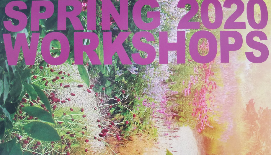 Celebrate Spring with Art!