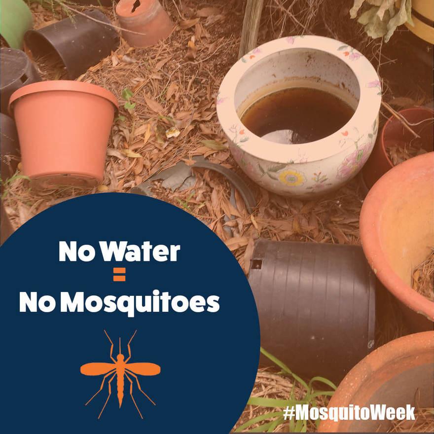 It's Mosquito Awareness Week in Watsonville!3