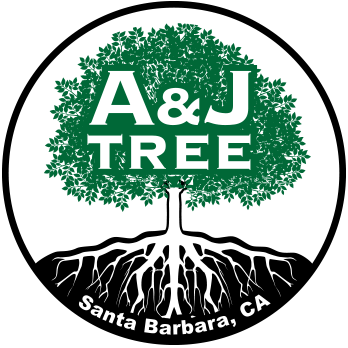 A and J Tree