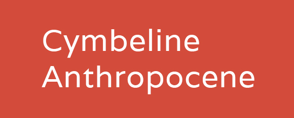 Cymbeline in the Anthropocene