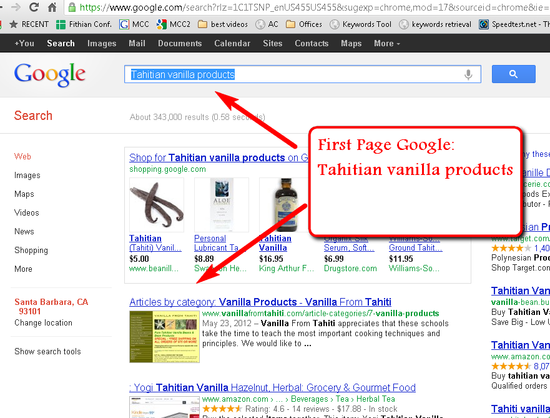 Google Search Results and SEO Search Engine Optimzation