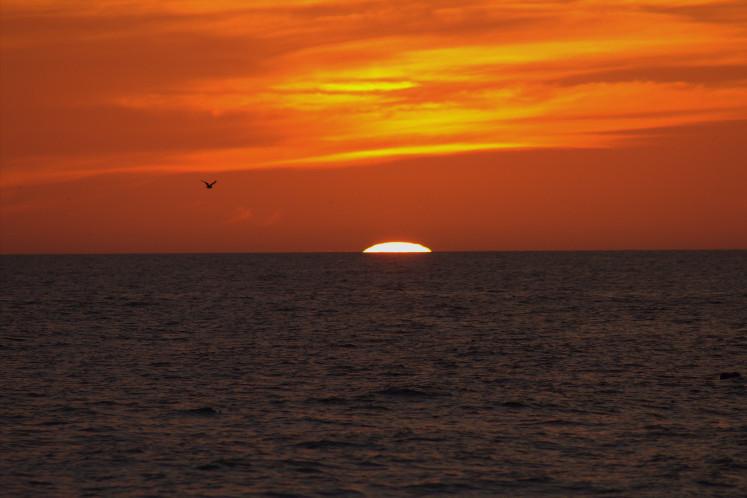 AMI Sunset
