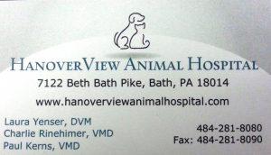 Hanoverview logo2