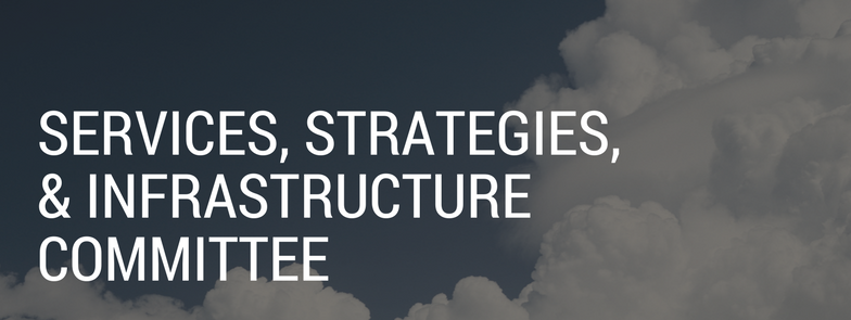 Services, Strategies, and Infrastructure Committee banner, background image of clouds