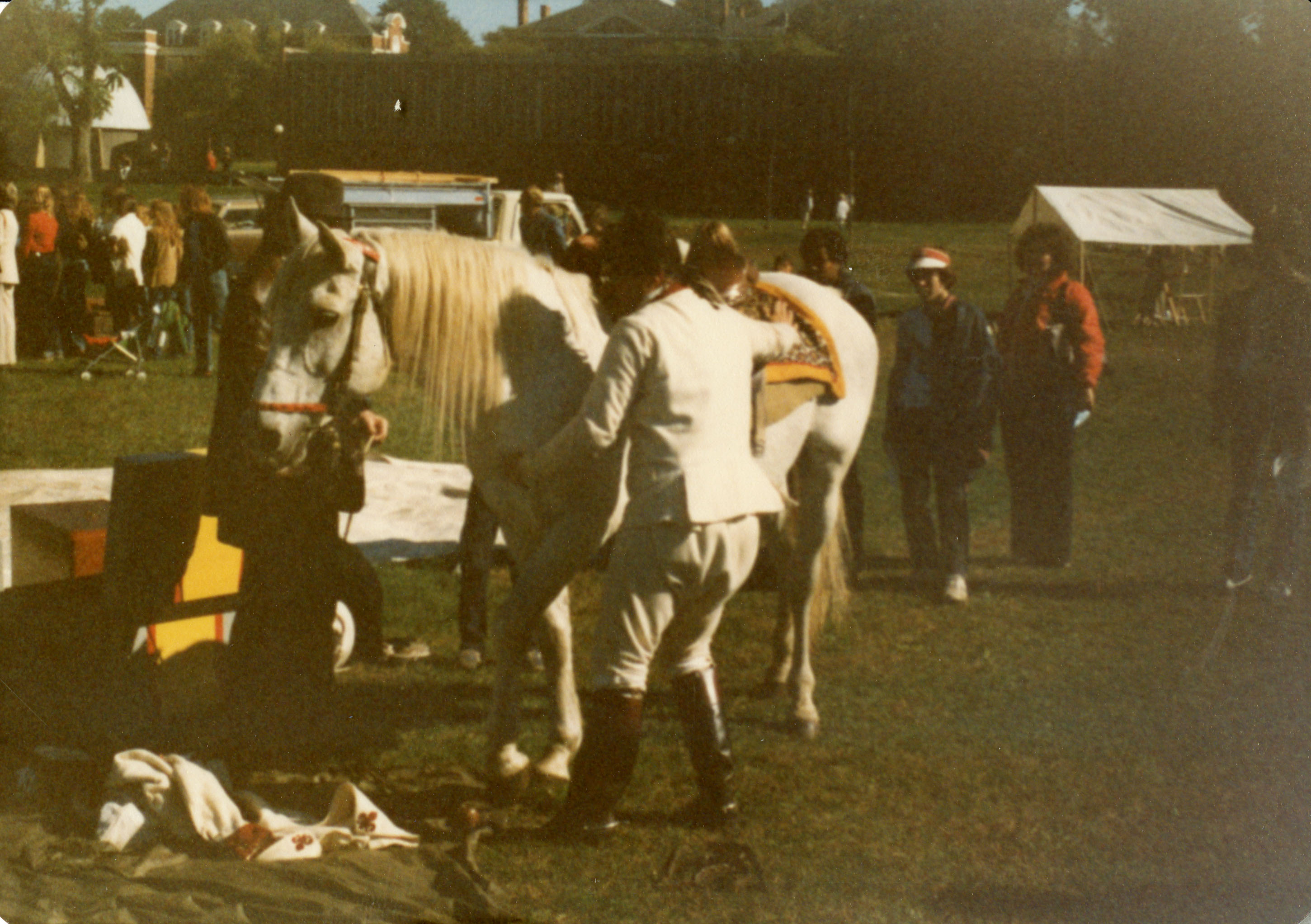 Horse Grooming during the Reenactment of the American
