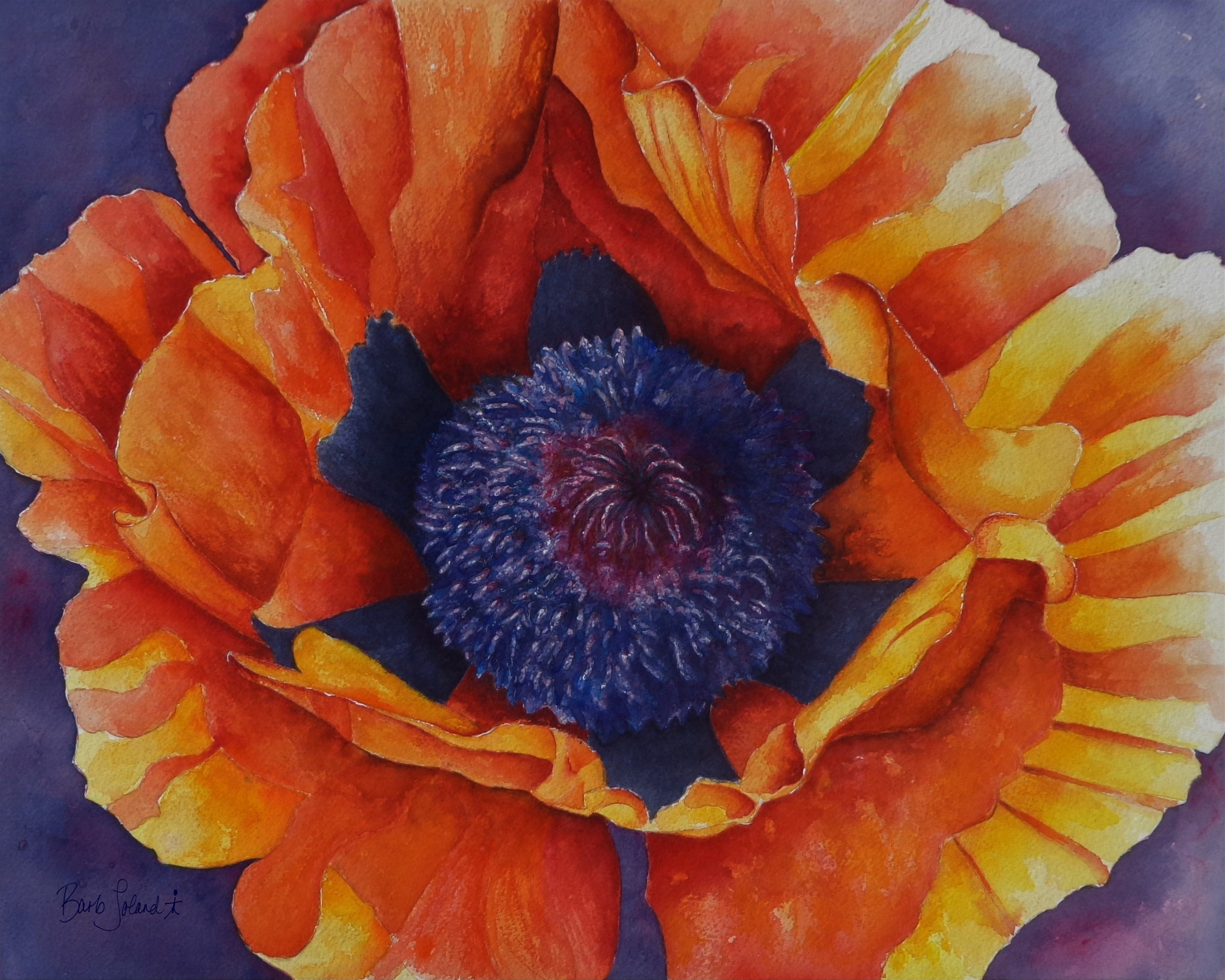 x [OLD] Watercolor Poppies