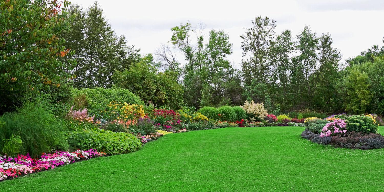 ... Landscape Green Lawn Garden