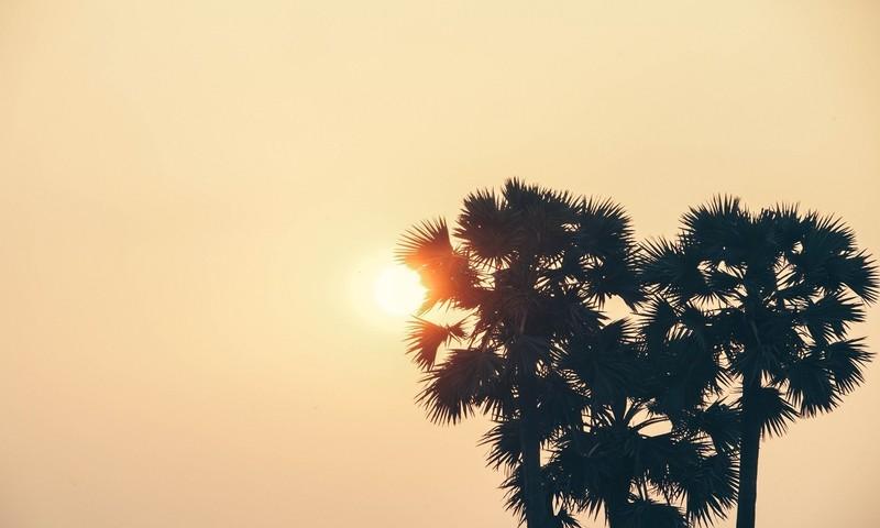 Κάνε Τον Ήλιο Φίλο Σου