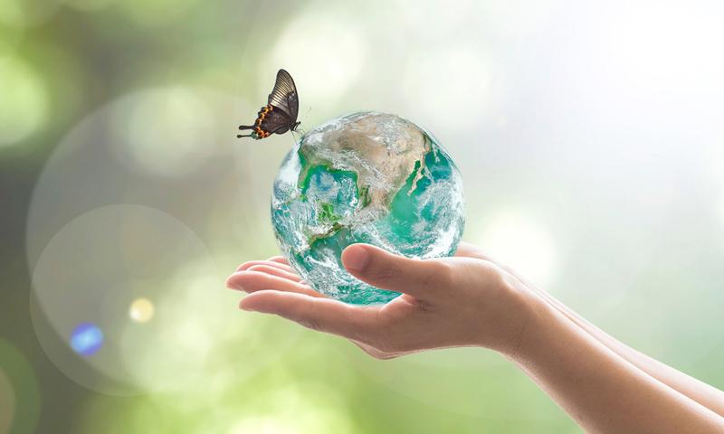 Μικρά Βήματα Για Την Προστασία Της Γης