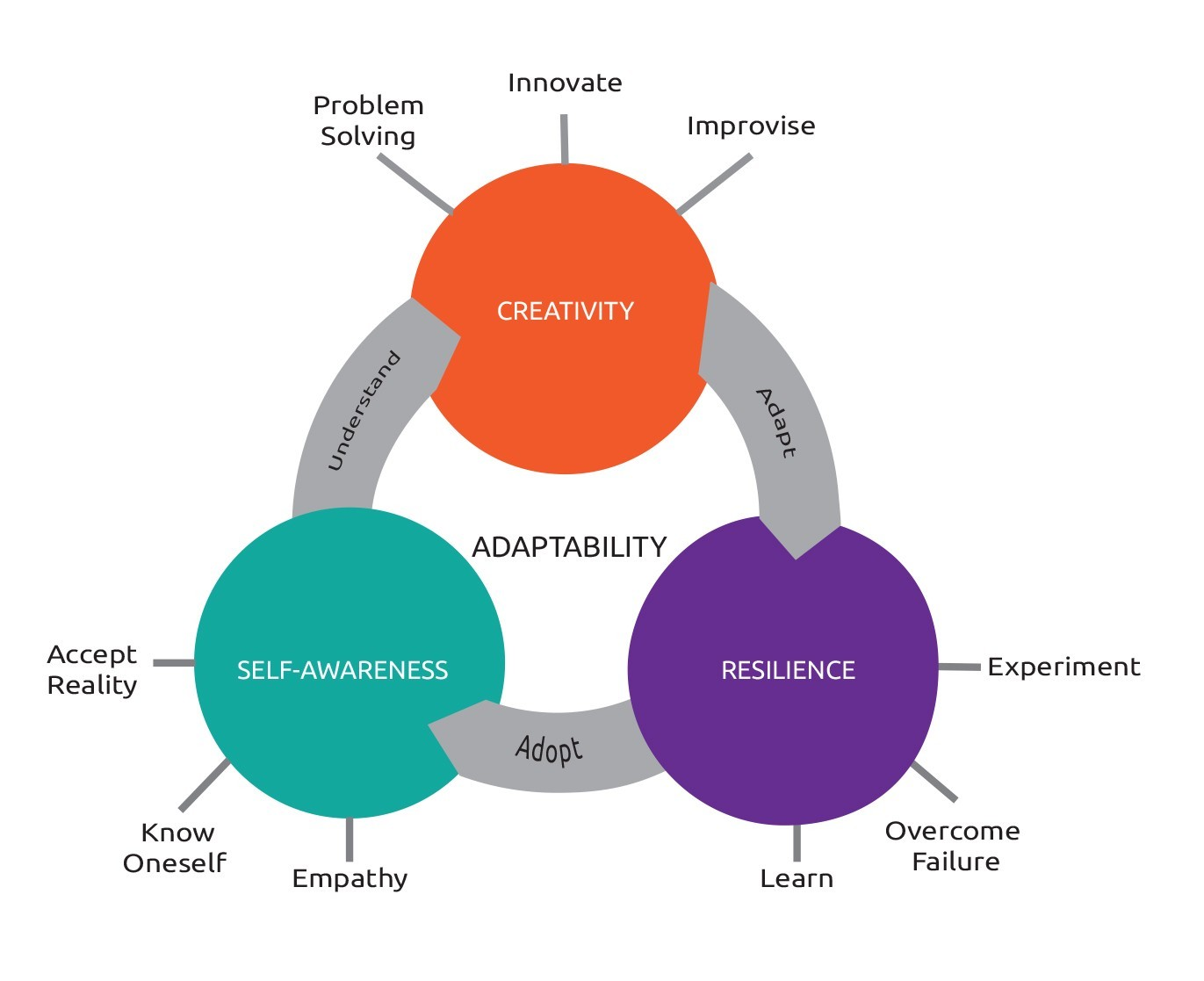 Three Meta-Skills Required To Develop Adaptability