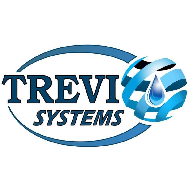Trevi system Logo