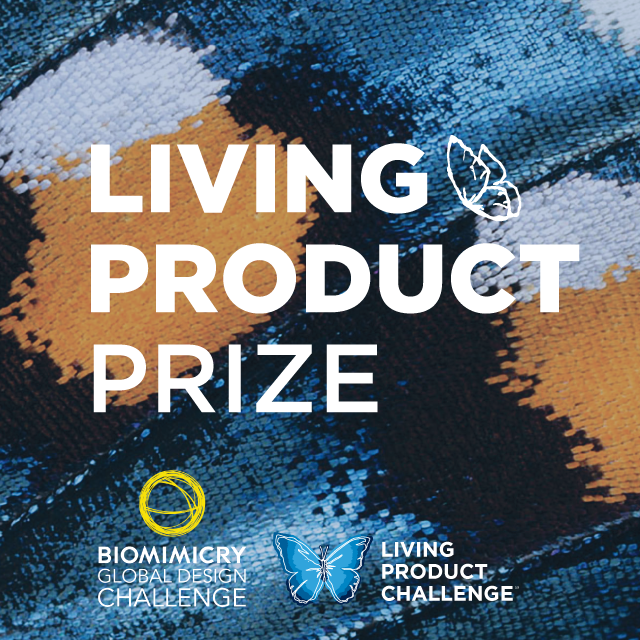 Introducing a brand-new prize for Living Products!