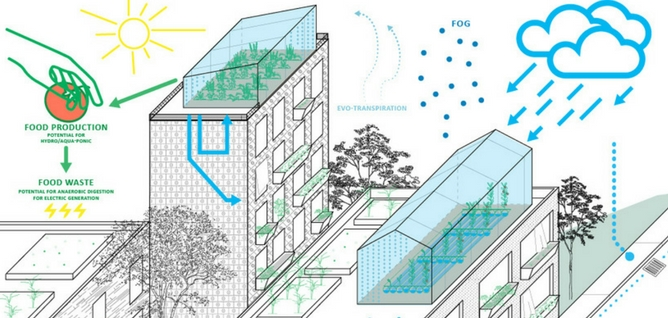 A water management system for the future, brought to you by spiders, plants, bees, fungi, and our newest Ray of Hope Prize winners.