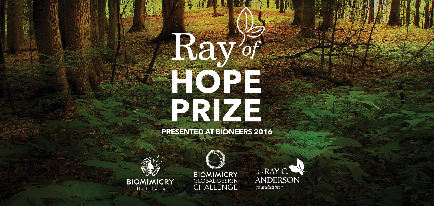 Soil restoration innovation wins $100,000 Biomimicry Global Design Challenge Ray of Hope Prize™