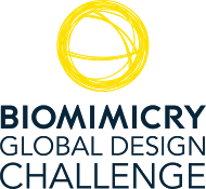 Biomimicry Global Design Challenge