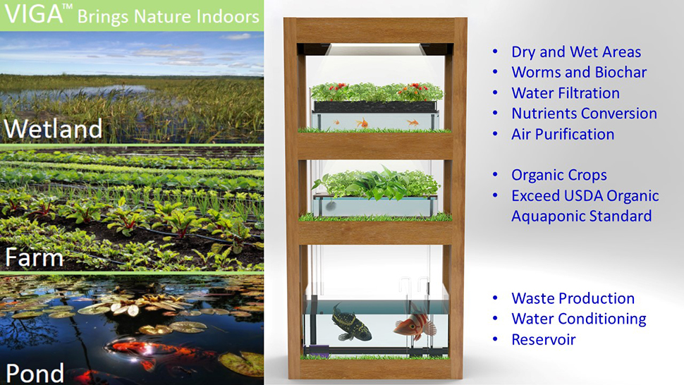 Vertical indoor garden an indoor regenerative design for Indoor nature design challenge