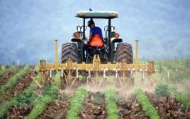 500 brevetti l'anno per l'Italia nel settore alimentare