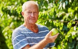 Multifunzionalità delle imprese agricole: l'agricoltura sociale