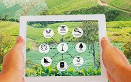 Agricoltura 4.0: tutti i rischi per la sicurezza
